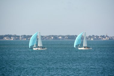 Boats with cyan sails