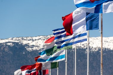 Flags of different countries with mountains in the background