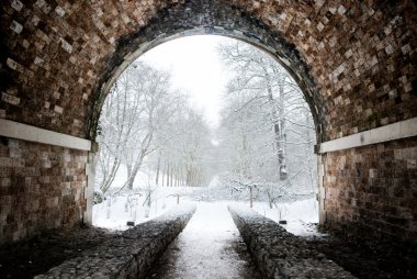 Tunnel to a magical winter forest