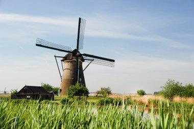 Typical Dutch windmill in a field
