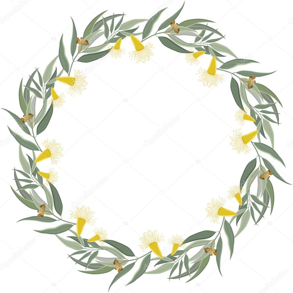Eucalyptus wreath. Floral border frame