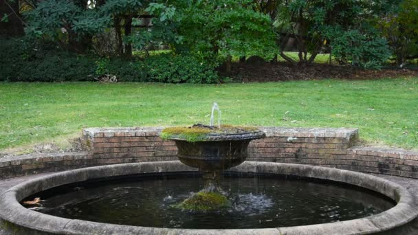 Omtyckta Trädgård fontän med rinnande vatten — Stockvideo © OKGraphic QC-36