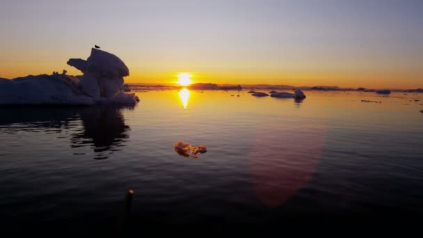 glacier ice floes floating in water at sunset
