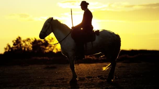 kovboj na koni na bílém koni