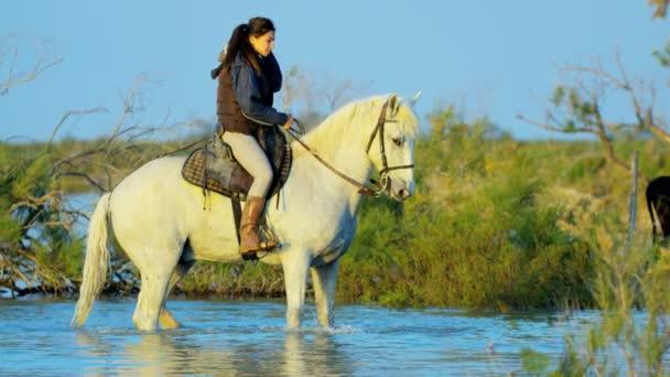 female cowboy riding on Camargue horse
