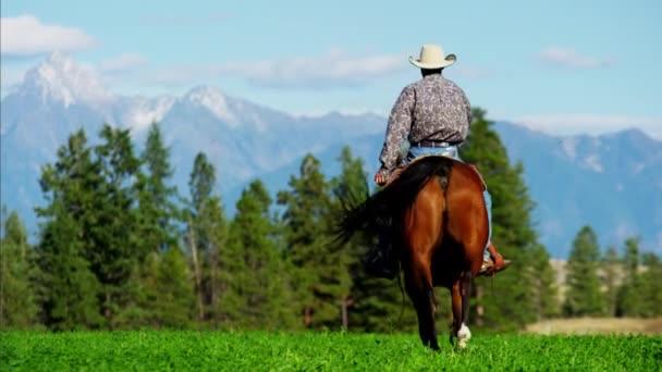 Cowboy che galoppa attraverso prati