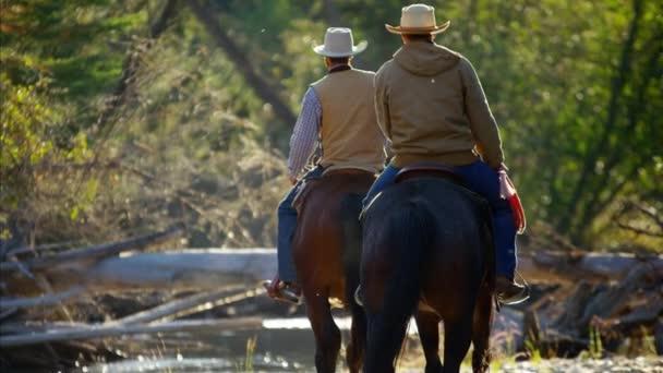 Kovboje na koni koně v řece
