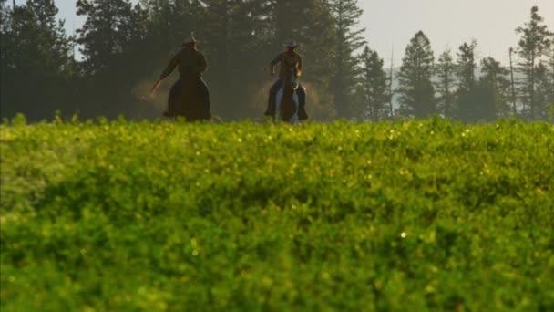 Kovboj jezdci Cválání v lese
