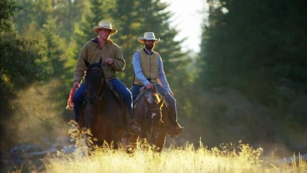 Jezdci na koních v lesnatém údolí