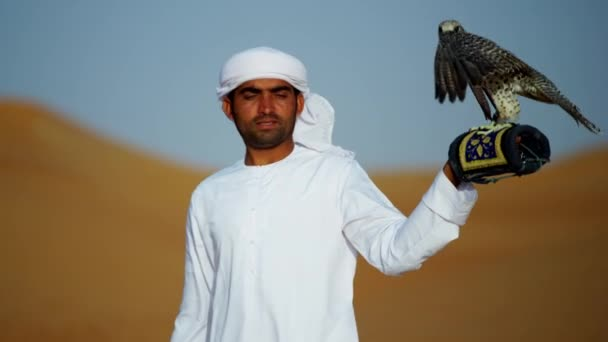 falcon on gloved wrist of owner
