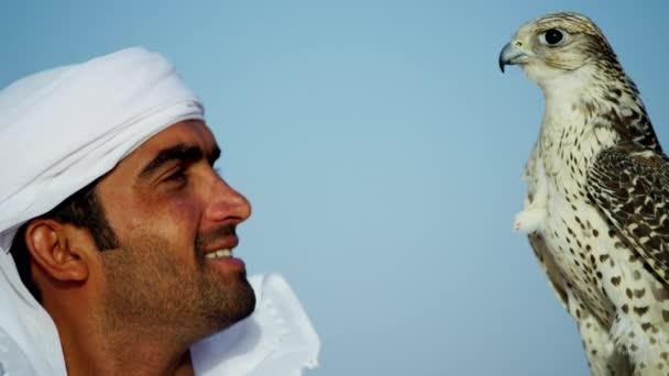 Falcon sul polso guantato di proprietario
