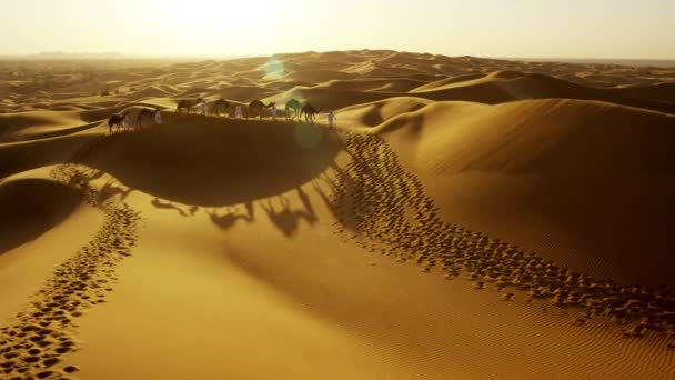 camel train travelling across desert