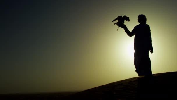 Falcon legati al proprietario maschile
