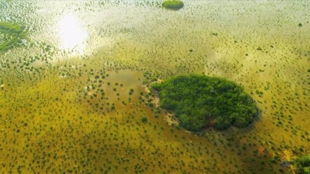 Národní Park Everglades bažiny a mokřady