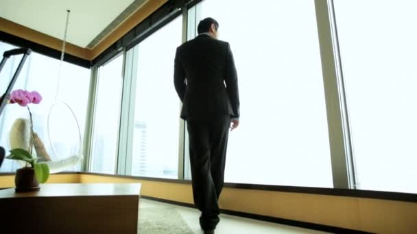 Businessman in hotel viewing cityscape