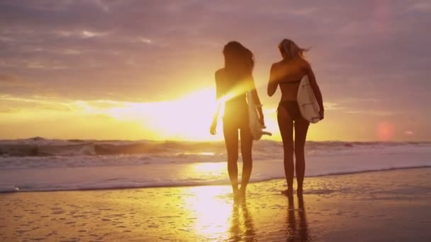Girls holding surfboards on beach