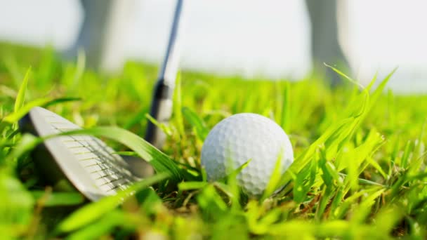 golf player playing on the golf field