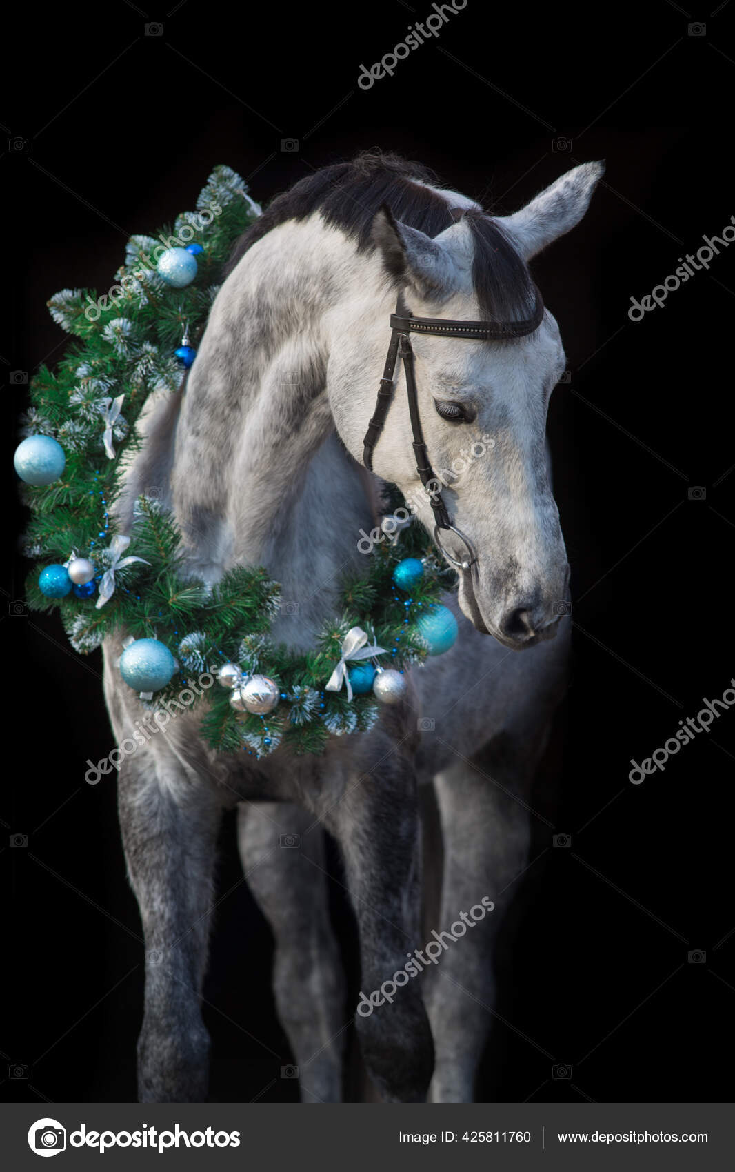 ᐈ Christmas Horse Costume Stock Pictures Royalty Free Horse Wearing Santa Hat Images Download On Depositphotos