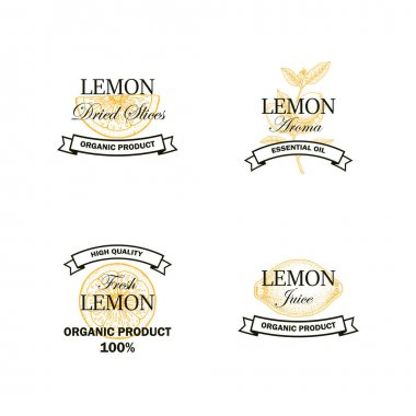 Set of Lemon fruit logo with hand drawn elements isolated on white background. Vector illustration in vintage style icon