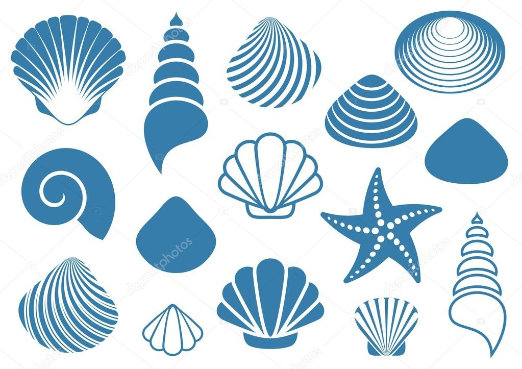 Фотообои Sea shells