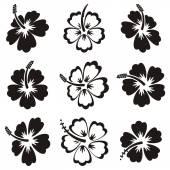 Vektor hibiscus silhouette ikonok