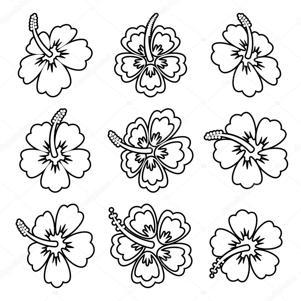Iconos de vector hibisco flor contorno — Vector de stock ...