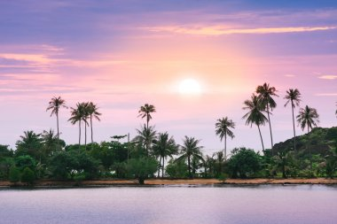 Violet sunset over tropical sand beach at Thailand island