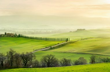 Landscape in foggy morning in Tuscany