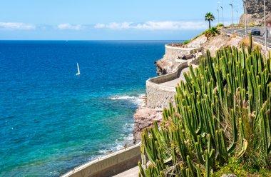 Coastline from Puerto Rico to Amadores beach