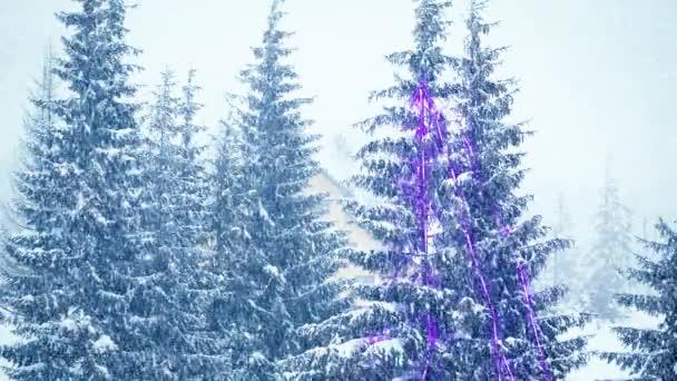 Schneefall im Winter im Wald, sanfter, verschneiter Weihnachtsmorgen mit fallendem Schnee. Winterlandschaft. Schneebedeckte Bäume