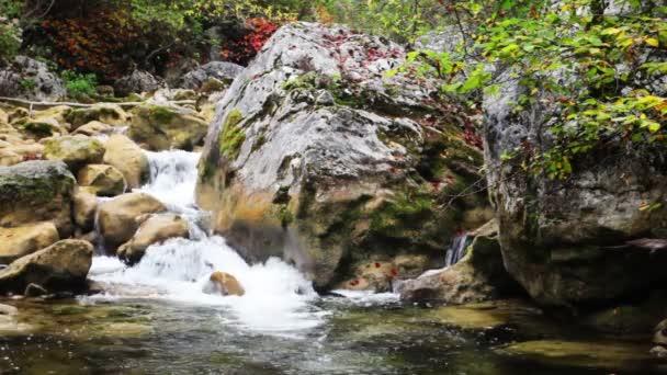 Kleine Wasserfälle in einem ruhigen Wald