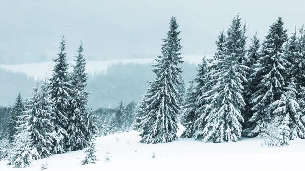 krásná Zimní krajina pod sněhem zahrnuty stromy