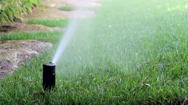 jardin arrosage syst me d 39 irrigation automatique arrosage de pelouse vid o carlosneto 73476819. Black Bedroom Furniture Sets. Home Design Ideas