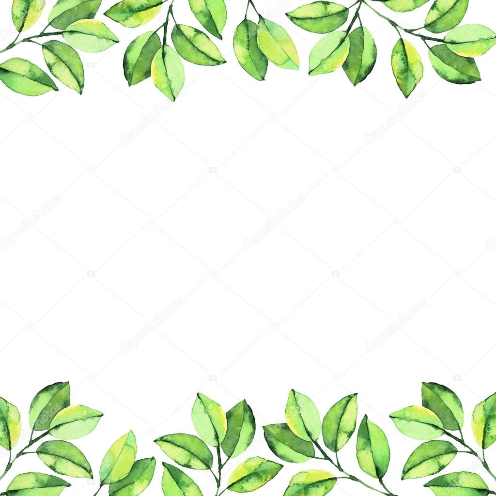 green leaf watercolor background � stock photo 169 anamad