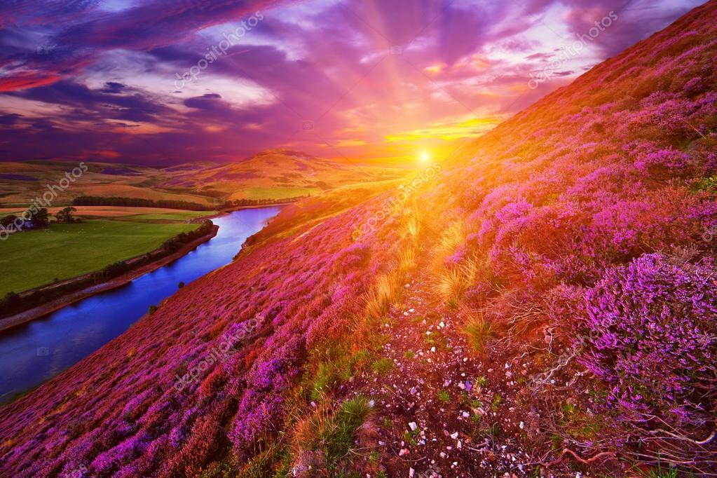 Фотообои Beautiful landscape of scottish nature