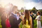 Fotografie Wedding guests clinking glasses