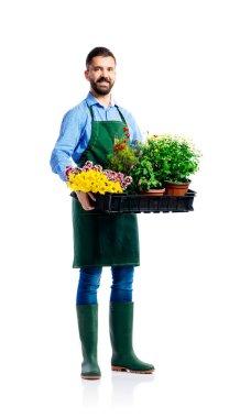 Young handsome gardener in green apron. Studio shot on white background stock vector
