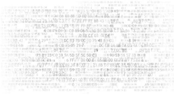 Codice esadecimale in esecuzione su uno schermo di computer su priorità bassa bianca. Cifre blu