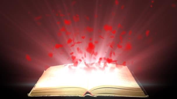 Pojetí lásky pro knihu