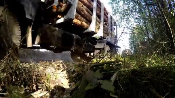 získávání načítání dřeva na dřevařský náklaďák. Kombajn, pracující v lese. Přeprava dřeva v místě lze jen těžko průjezdná. Velká kola closeup