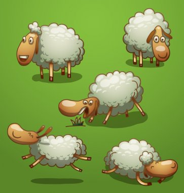 Funny sheep set