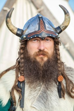 Portrait of Viking