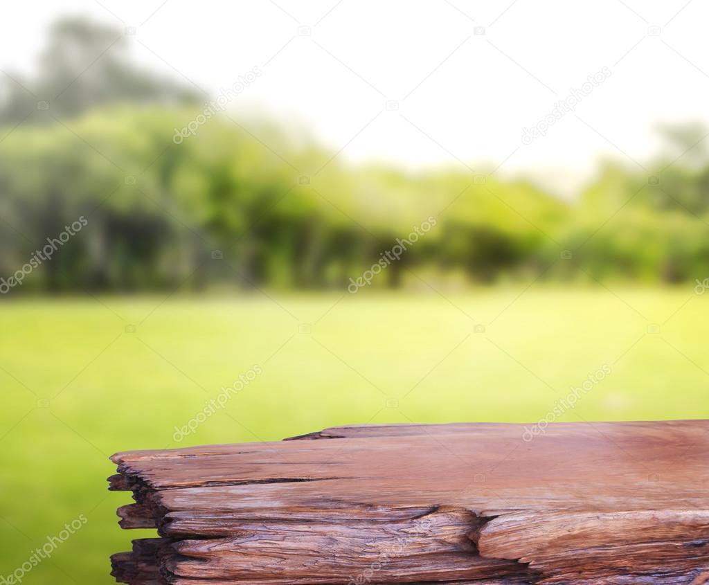 Masa üstü Ve Arka Plan Bulanıklık Doğa Stok Foto Nuttapoldpspt