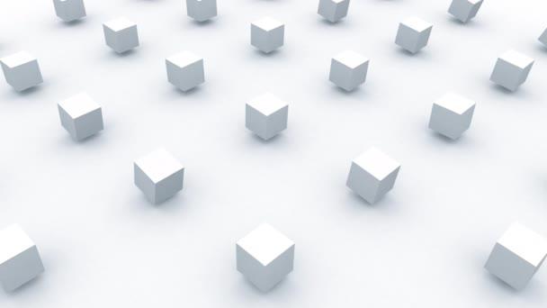 Minimalist and modern white cubes geometric background animation 3d