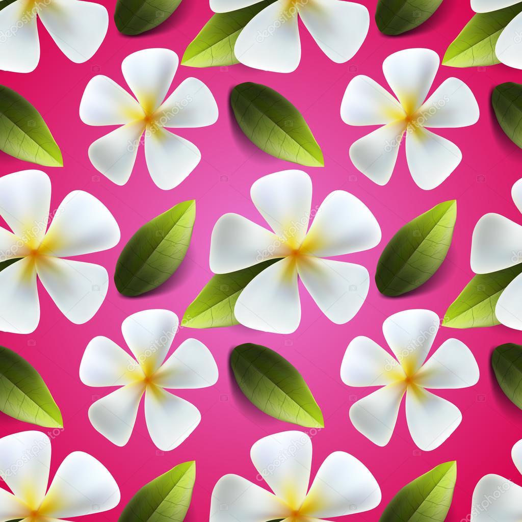 Dessin Sans Couture Fleurs De Frangipanier Image Vectorielle
