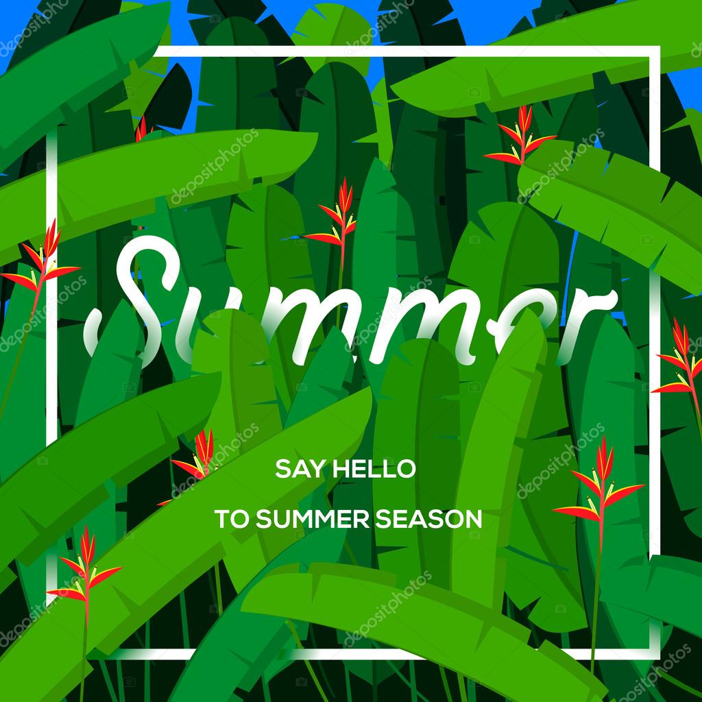 Summer season concept, tropical paradise with palm leaves