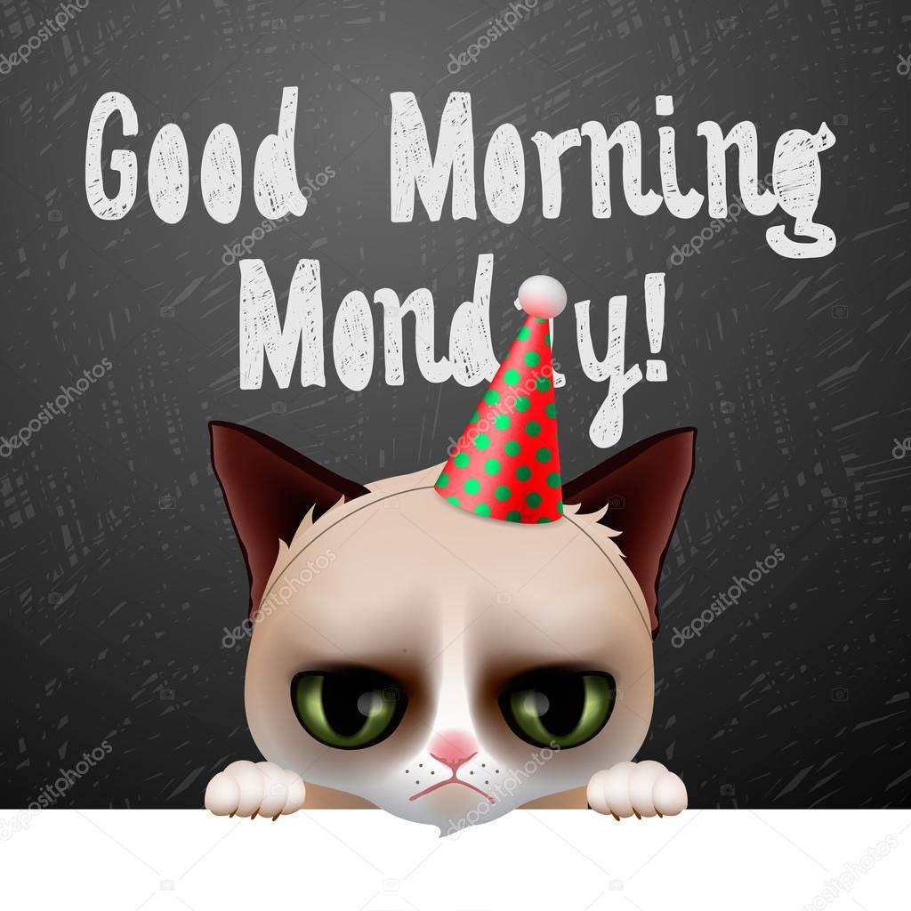 Guten Morgen Montag, mit süßer mürrischer Katze