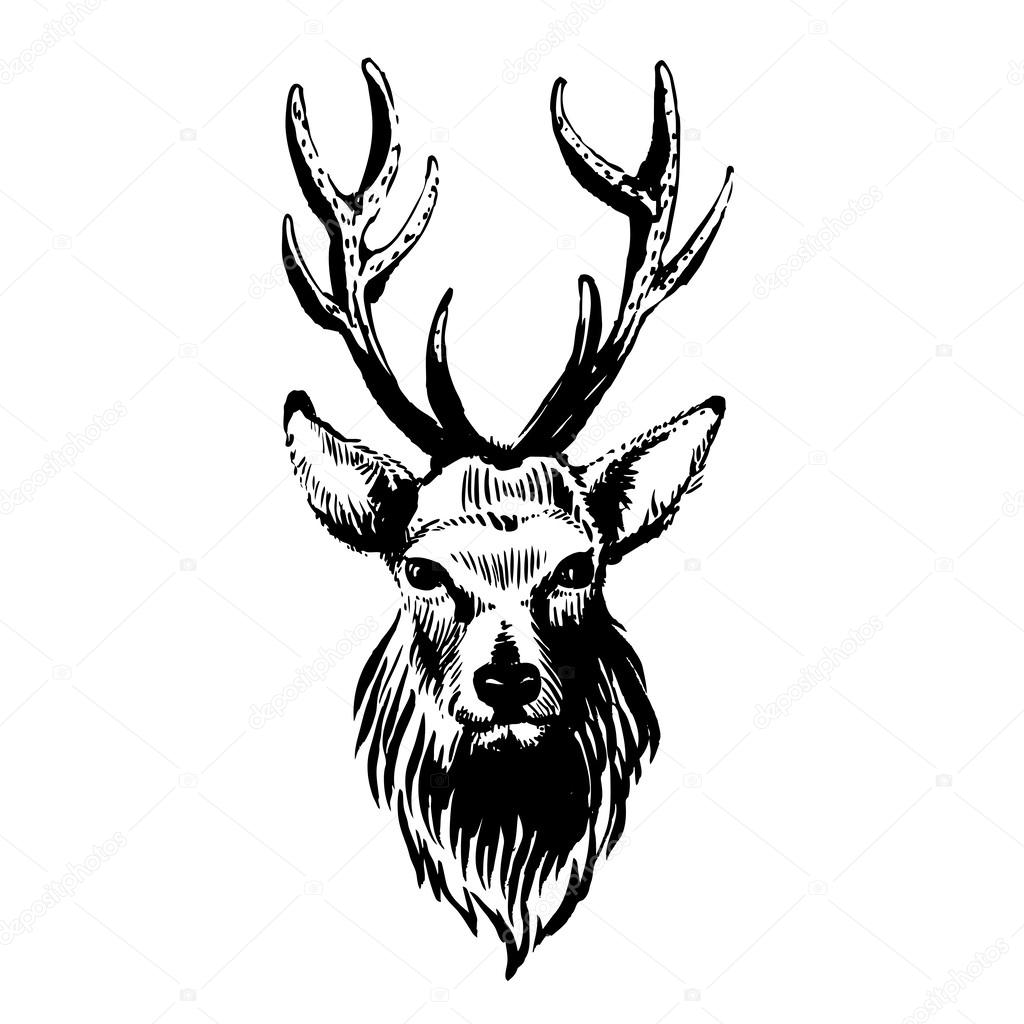Shutter Camera Icon Zoom 2008488 additionally Stock Illustration Dear Skull Dreamcatcher Lineart Beautiful Tattoo Art Vintage Deer Bull Elk Horns Antlers Branches Ornate Dream Catcher Image61633236 besides 325455510547034555 additionally 9 together with Free Clipart 14219. on deer clipart black and white