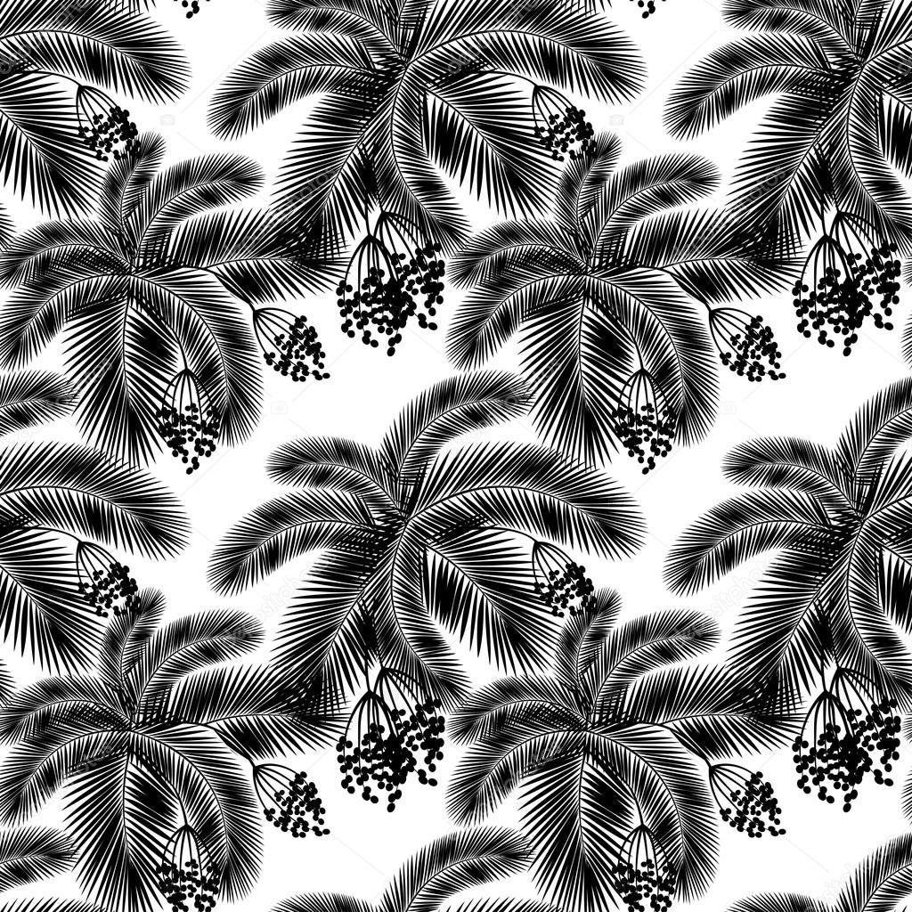 vector illustration feuilles de palmier noir et blanc. Black Bedroom Furniture Sets. Home Design Ideas
