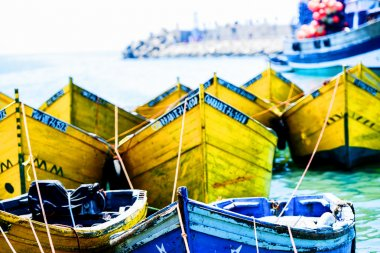 Prows of yellow boats tied to the shore
